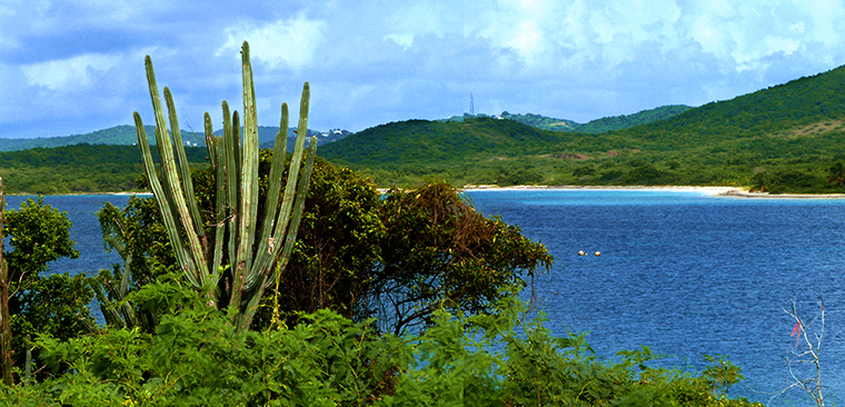 Vieques Blue Beach or Bahia de la Chiva