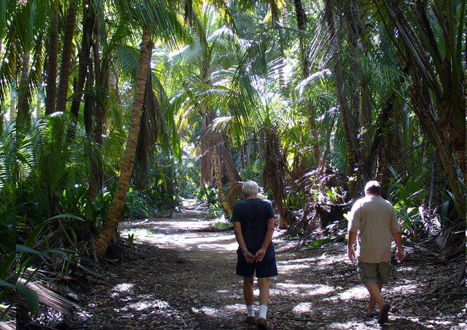 The Humacao Nture reserve has lagoons, birds, iguanas, fishing and coconut groves by the sea