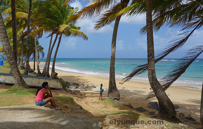 Calm Beach At The Point In Luquillo