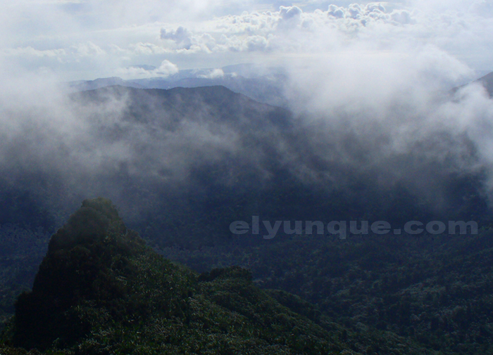 Looking west towards 3 picachos peaks from the tower at the top of El Yunque peak