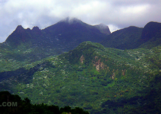 The peaks of the El Yunque mountains