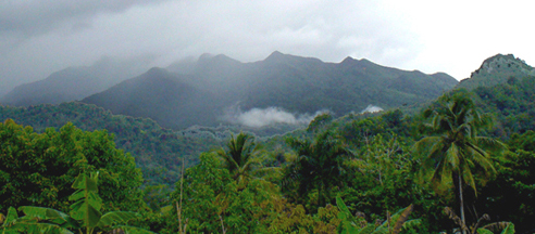 view looking up to the top of el yunque where Yuquiyu dwells