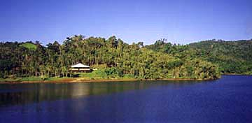 Puerto rico fly fishing in freshwater saltwater lakes for Fly fishing puerto rico