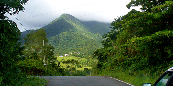 view of the east peak of el yunque from the road