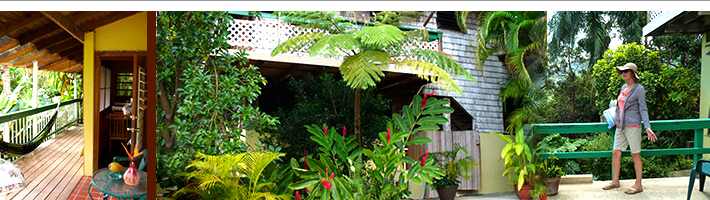 Sue's Place villa vacation rental near Luquillo