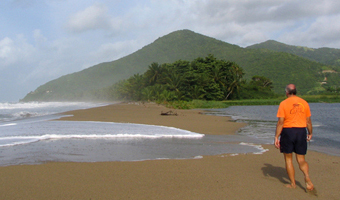 The town beach of Maunabo is lined with coconut trees