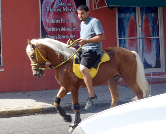 Horse riding in the town of Jayuya
