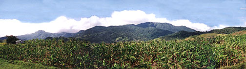 pico este. panoramic view of eastern el yunque from highway