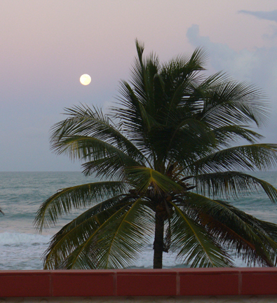 luquillo beach moonrise guesthouse view