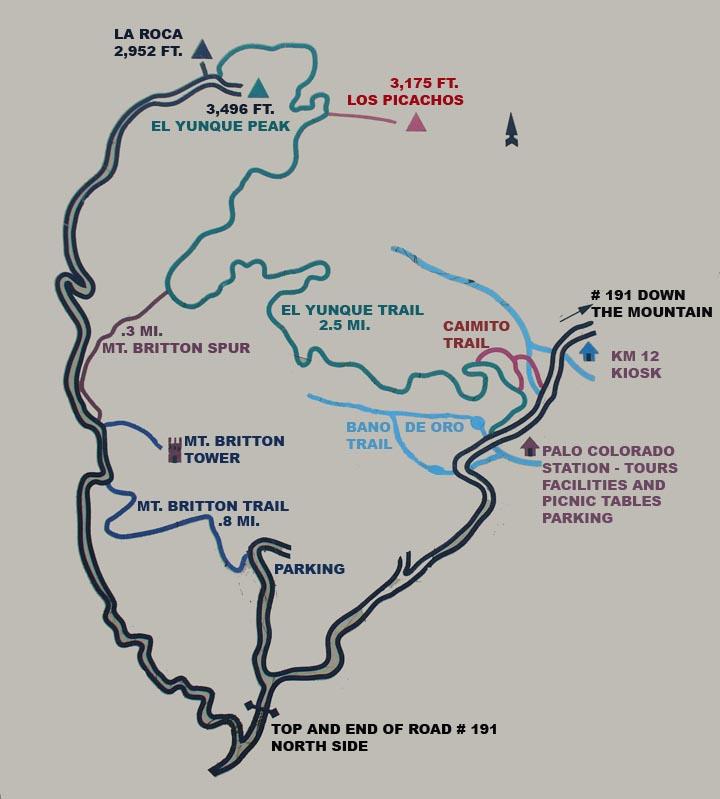 Map of the top trails of El Yunque rainforest Puerto Rico
